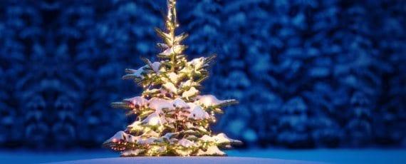 ferienhaus-weihnachten