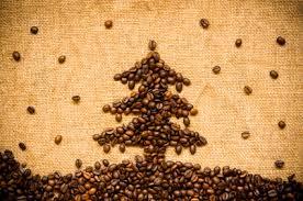 koffieboom